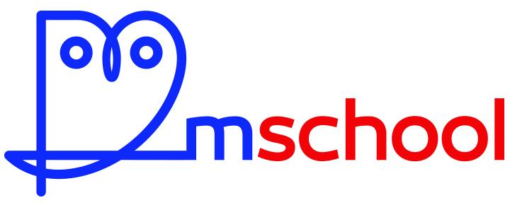 M-School.pl